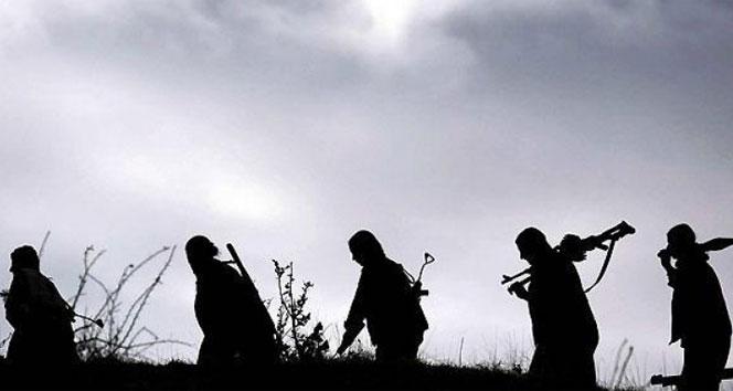 Şırnak'ta 22 terörist öldürüldü