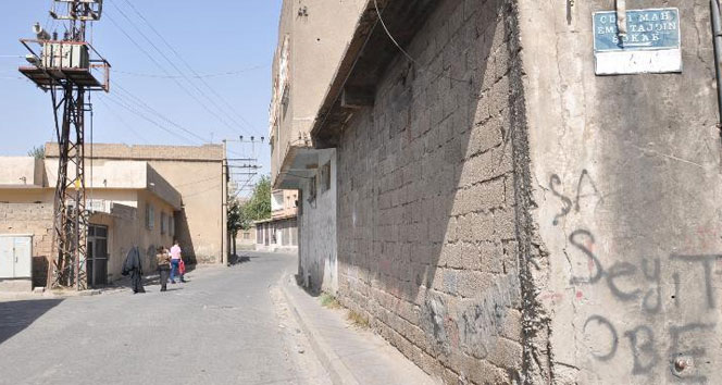 Beytüşşebap'ta 9 el yapımı patlayıcı imha edildi