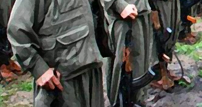 Hakkari'de PKK'lı bir kadın teslim oldu