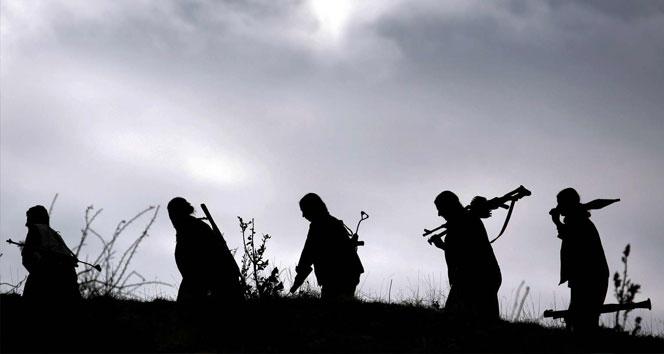 Şırnak'ta 3 PKK'lı teslim oldu!