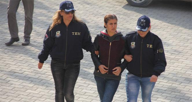 Iğdır'da terör operasyonu: 1 tutuklama
