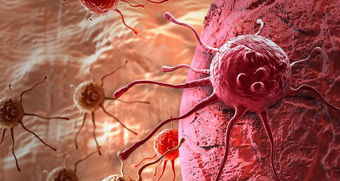 Türkiye'de her gün 450 kişiye kanser teşhisi koyuluyor