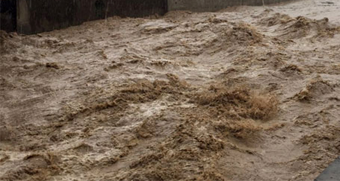 Güney Afrika'da sel ve toprak kayması: 51 ölü