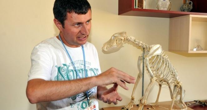 ADÜ, hayvan iskeletleri konusunda Türkiye'de marka oldu