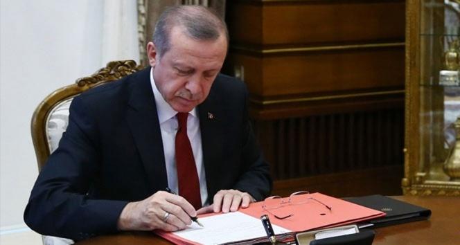 Erdoğan'dan 'Ağaç dikme bayramı' düşüncesine onay