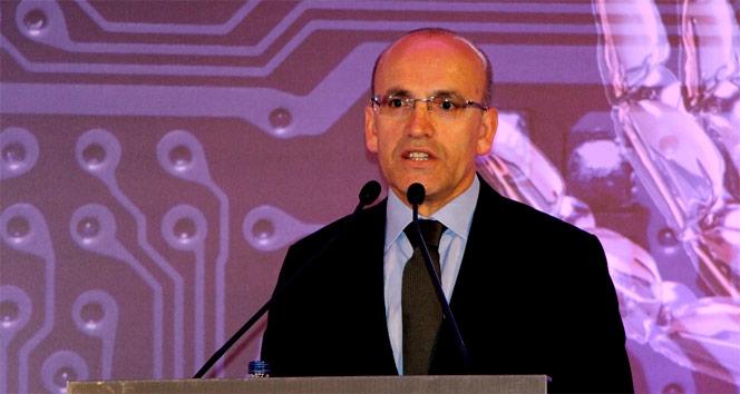 Başbakan Yardımcısı Şimşek'ten vize krizi açıklaması