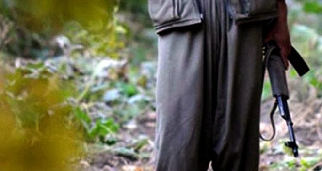 MSB: '5 PKK'lı terörist Silopi'de teslim oldu'
