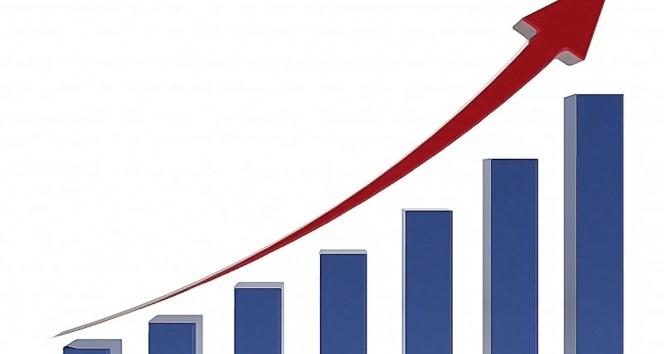 Türkiye'nin yurtdışı varlıkları Kasımda arttı