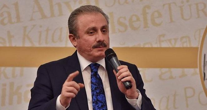 TBMM Başkanı Şentop: 'Türkiye, Suriye'de kalıcı barışın sağlanması için her türlü girişimin içinde'