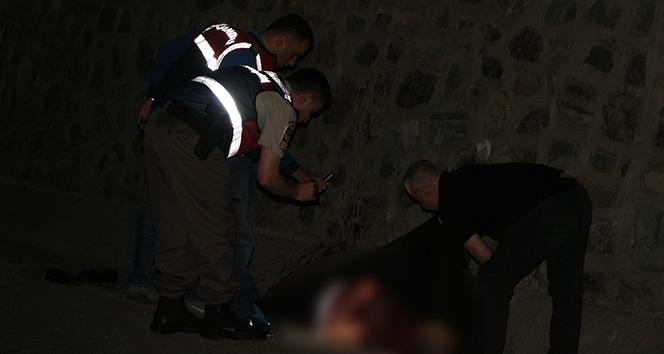 Sakarya'da yol kenarında kanlar içerisinde bir ceset bulundu