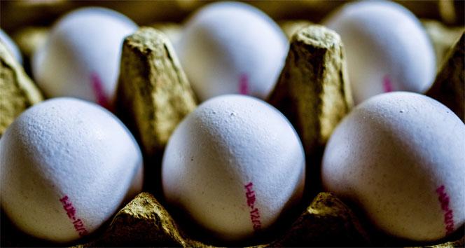 Yumurtaların üzerine artık yetiştirme metodu yazılacak