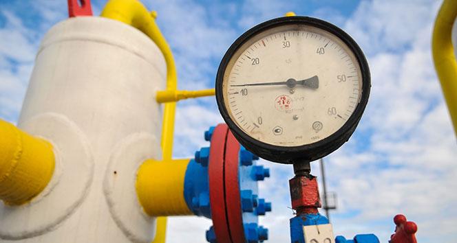 BOTAŞ'tan Artvin ve Şırnak'a doğalgaz açıklaması