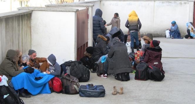 Ayvalık'ta 50 kaçak yakalandı