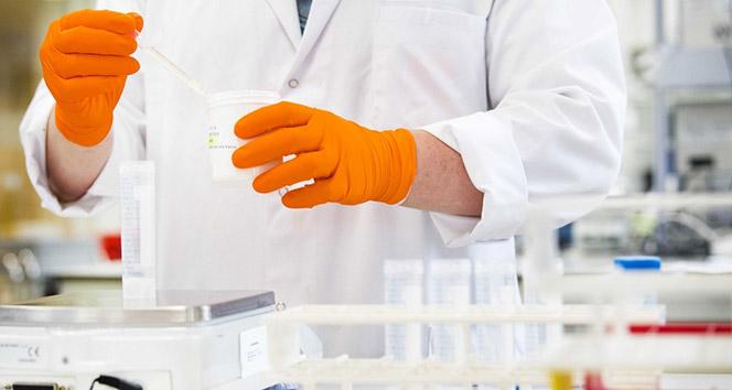 Kanser tedavisinde kök hücre nakli