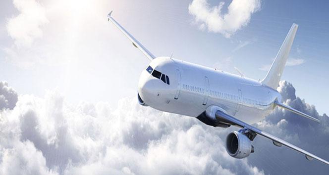 THY uçağı iniş sırasında kuş sürüsüne çarptı