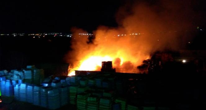 Kocaeli'de palet fabrikası alev alev yandı
