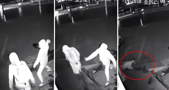 Şaşkın hırsız arkadaşını yaraladı