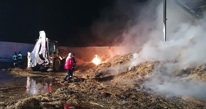 Kocaeli'de çiftlikte çıkan yangın