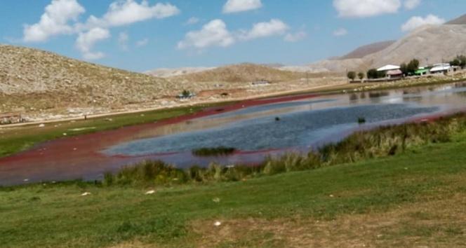 Alanya'da kırmızıya dönen göl şaşırttı