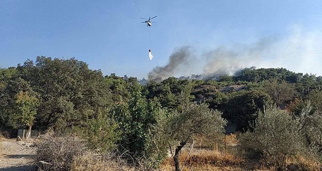 İzmir'de orman yangını!!