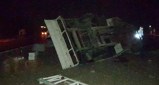 Yola atlayan koyunlara çarpan kamyonet devrildi: 3 yaralı