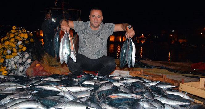 Palamut, balıkçıların yüzünü güldürdü
