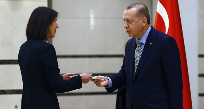 Cumhurbaşkanı Erdoğan, Hollanda Büyükelçisini kabul etti