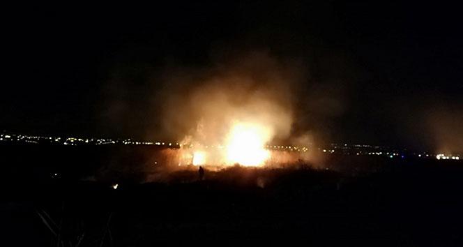 Mogan Gölü'nde sazlık yangını