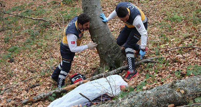 Kestiği ağacın dalı başına saplanan yaşlı adam hayatını kaybetti