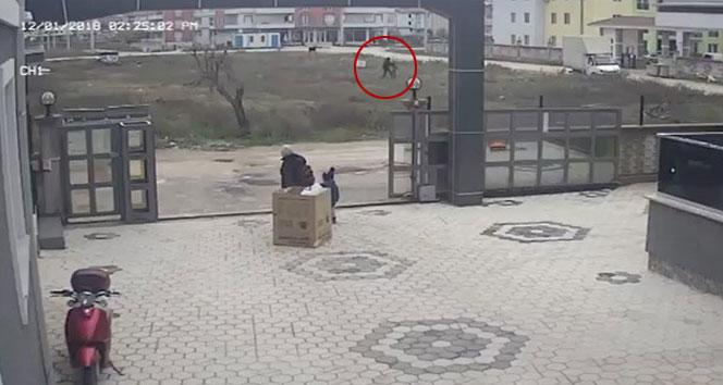 Kuşlarına bakan çocukları tekme tokat dövdü