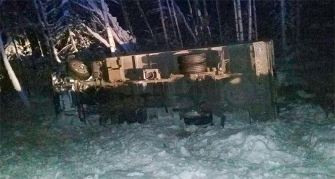 Rusya'da develer sirk kamyonunu devirdi