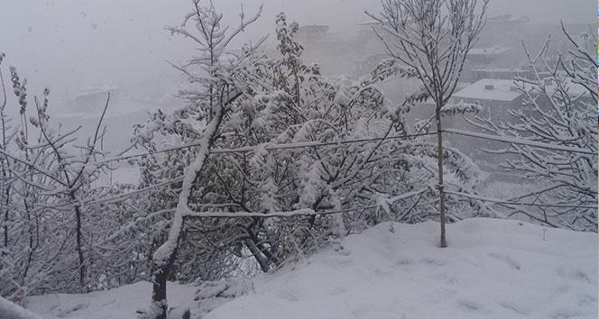 Hakkari'de kar yağışı !