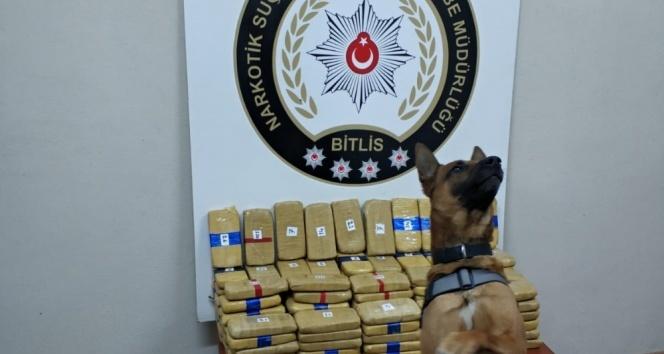 Bitlis'te ele geçirildi: Piyasa değeri 5,5 milyon TL