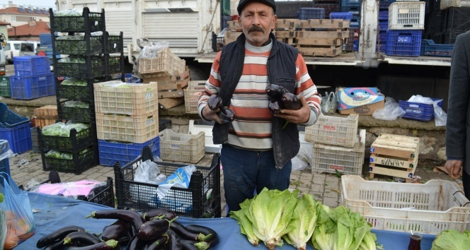 Patlıcanın fiyatı cep yakıyor