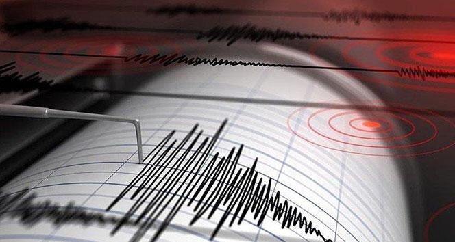 Kuşadası Körfezi'nde 8 saat içerisinde 13 deprem meydana geldi
