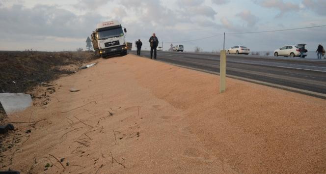 Kamyonlar çarpıştı, yol buğday tarlasına döndü