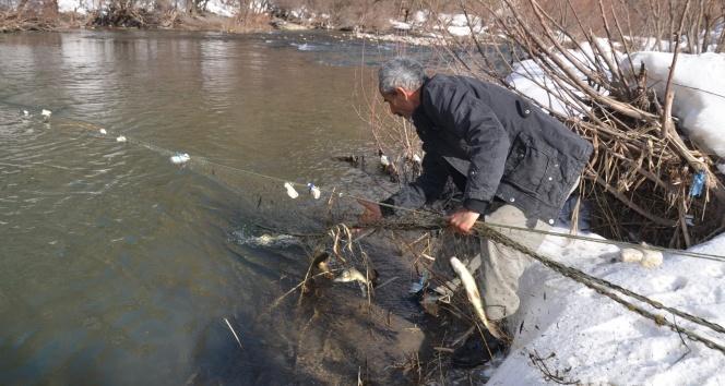 Eksi 14 derecede balık avı