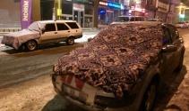 Ardahan'da Sibirya soğukları hayatı durma noktasına getirdi