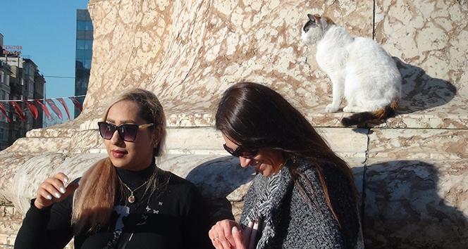 Taksim Cumhuriyet Anıtı'na çıkan kedi turistlerin ilgi odağı oldu