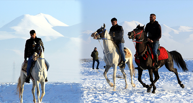 Cirit atlarının kar üstündeki dansı