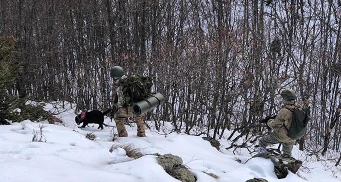 Mehmetçik'ten soğuk ve karlı havada terör operasyonu