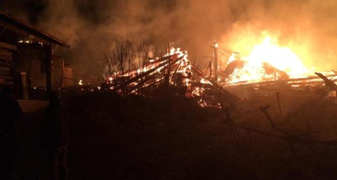 Kastamonu'da korkutan yangın! 2 ev ve 2 ahır kül oldu