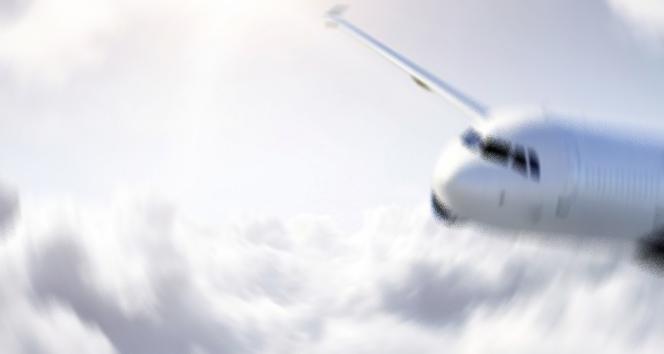 2020 yılında uçaklara 828 kez kuş çarptı