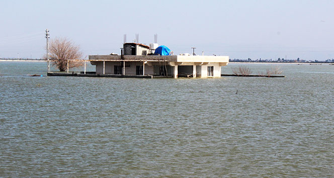 Amik Ovası'nda sular yükseldi