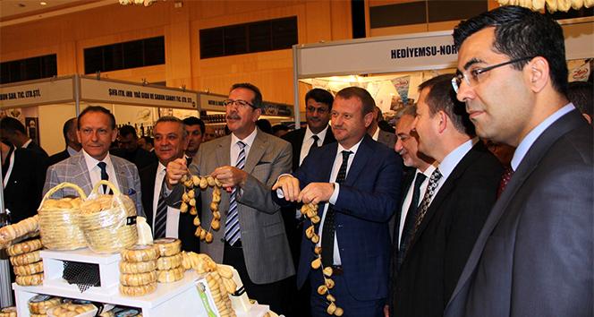 Araplardan Türkiye'ye tarım çıkarması