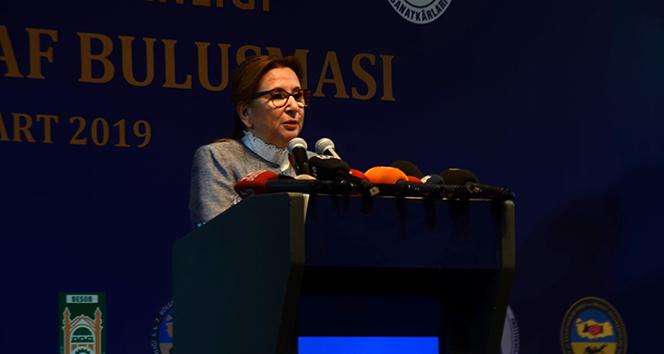 Ticaret Bakanı Pekcan: 'Son 10 yılda kadının istihdama katılımı yüzde 24'ten yüzde 34'e geldi'