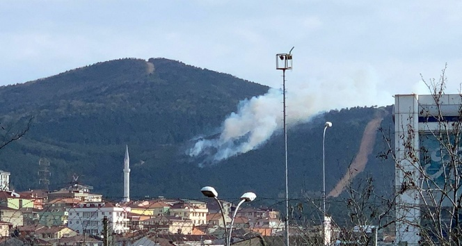 Aydos Ormanı'nda henüz bilinmeyen bir sebeple yangın çıktı
