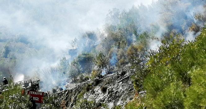 Fethiye'de orman yangını  !