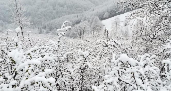 Nisan karı şaşırttı!