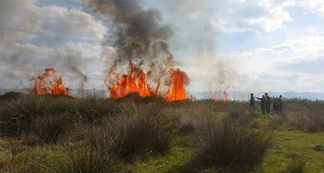 İznik'te sazlık yangını